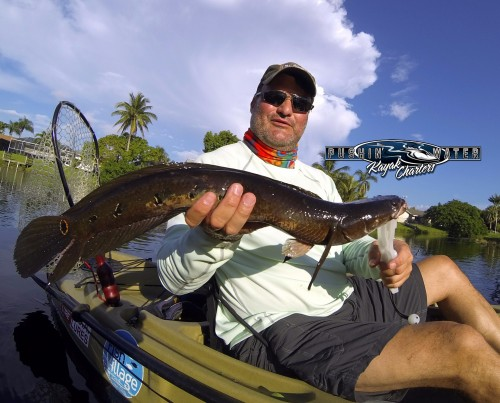 Freshwater fishing south florida book your trip for South florida freshwater fish